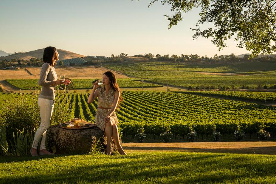 Wineries yarra valley