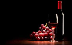 premium wines